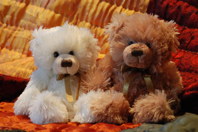 Two Teddies from the Tamborine Teddy Bear Shop