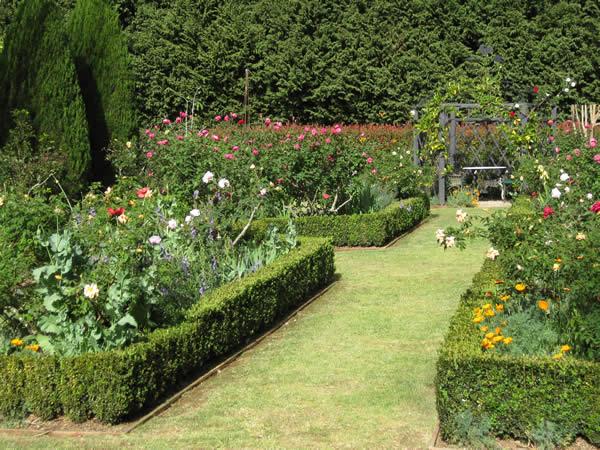 visit one of the open gardens on Tamborine Mountain