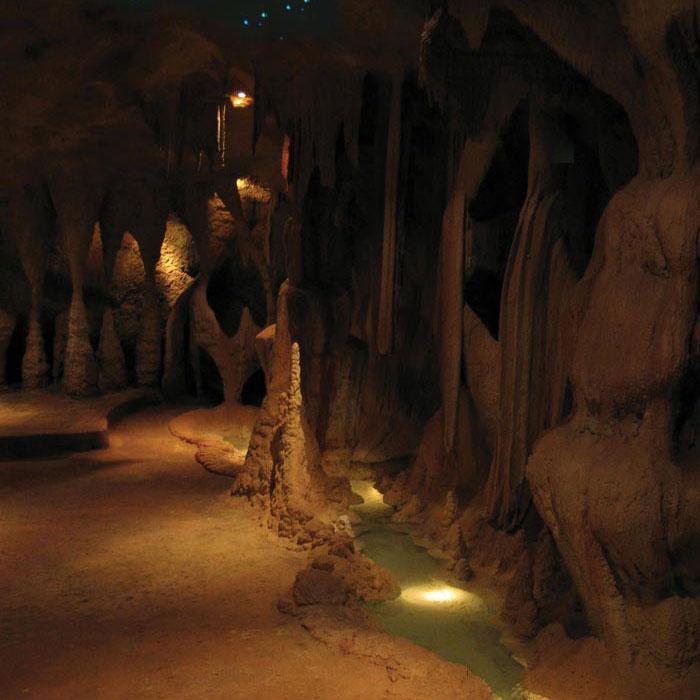 Glow Worm Caves on Mount Tamborine