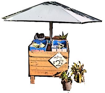 harvest-trail-bernies-fruit-stall