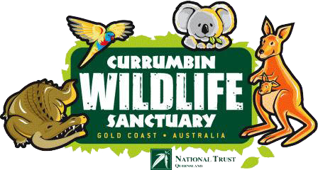 theme-park-currumbin-wildlife-sanctuary