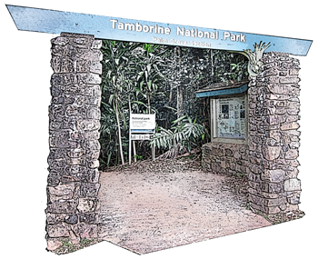 exit-walk-palm-grove-national-park