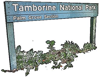 enter-palm-grove-national-park