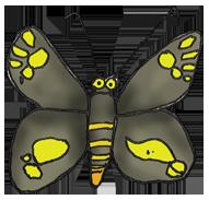 walk-to-a-waterfall-regent-skipper-butterfly