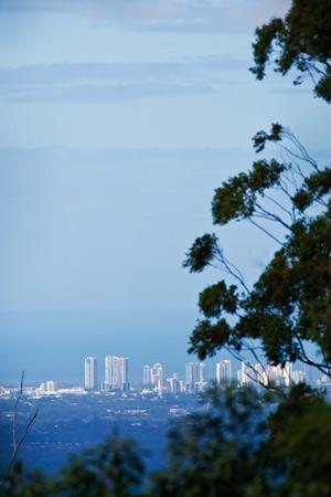 walking-trail-views-gold-coast
