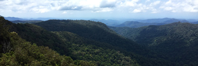 springbrook-national-park-lookout