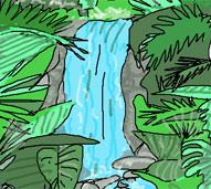 rainforest waterfall trail