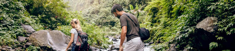 National Park Walking Tracks Tamborine Mountain