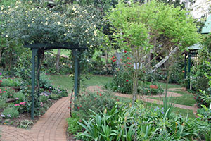 Gate and paths in the Botanic Gardens Tamborine Mountain