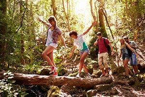 Group enjoying a walk in a National-Park - Tamborine Mountain
