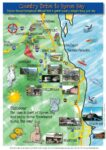 Walking Trail Map Guide