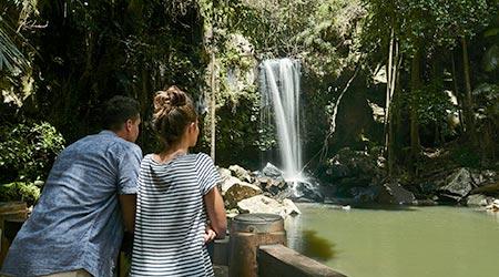 Couple viewing Curtis Falls flowing on Tamborine Mountain
