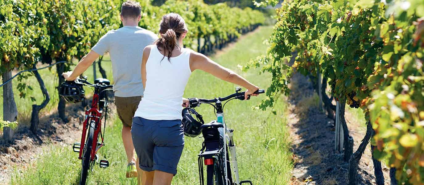 Man and woman with bicycles exploring Tamborine Mountain vineyard