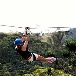 Girl Enjoying the Canyon Flyer Zipline on Tamborine Mountain